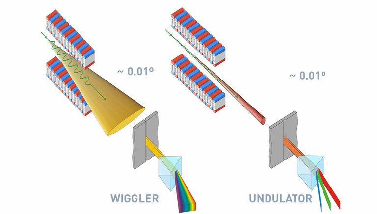 Insertion Devices graphic showing wiggler and undulator