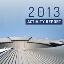 NEW ALBA ACTIVITY REPORT 2013